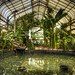 VBG - Tropical House & Pond - Tonemapped by Ian Johnston LRPS