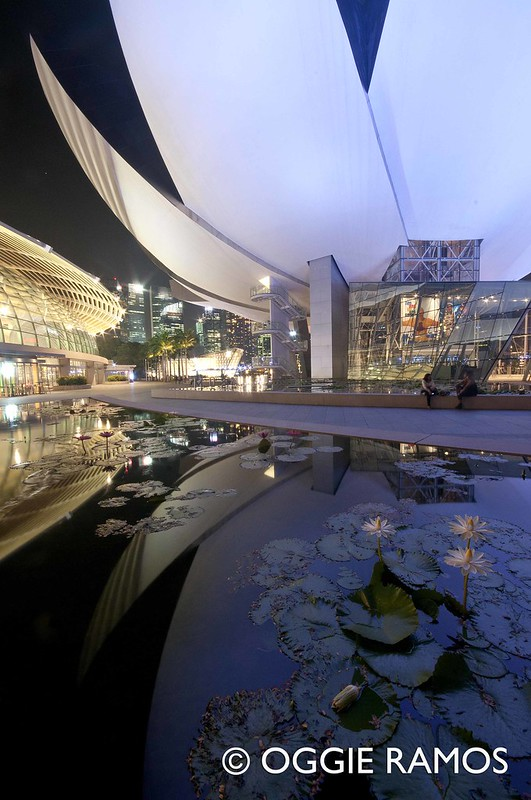 Singapore Lotus Museum Reflections