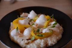 Coconut rice pudding, mango, lime air, puffed rice…