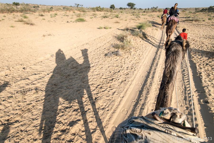 прогулка в пустынях индии Биканер