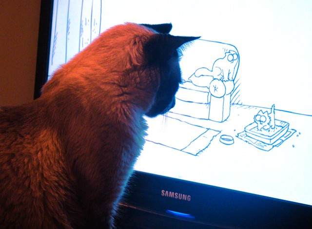 """""""Simons Cats"""" La serie favorita de Hilario"""