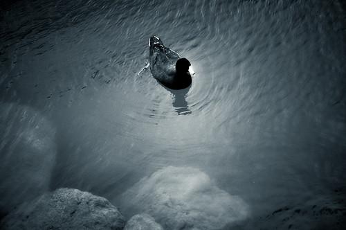 Laguna encantada (14)