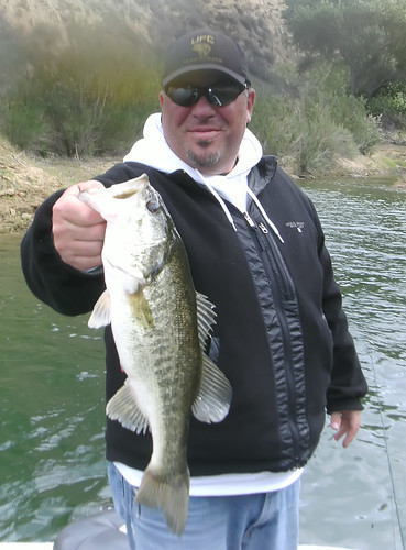 3 Pound Castaic Lake Bass