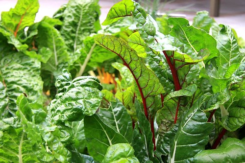 The Advantage Of Organic Food