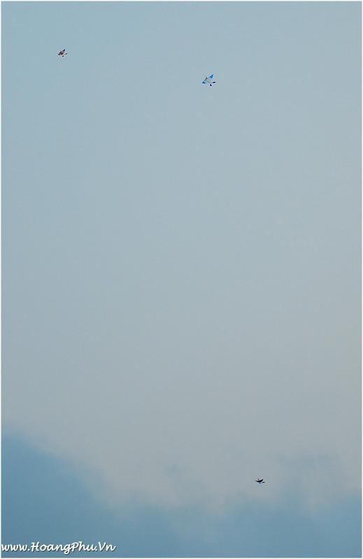 Diều sáo hòa ca trên bầu trời KĐT Việt Hưng