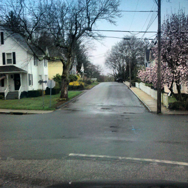 Its looking like spring on our street. #norwich #neighborhood #CT