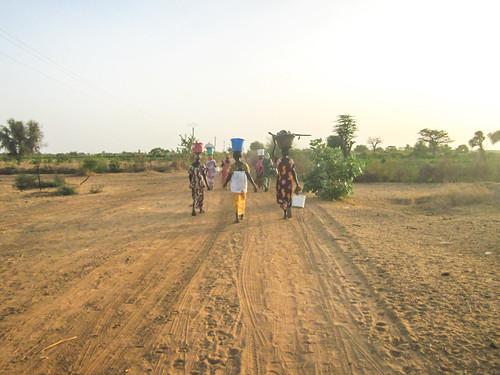 Image: Femmes revenant des champs vers le village