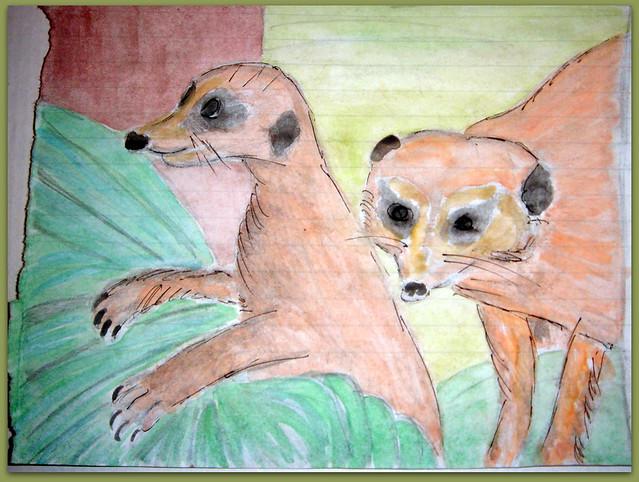 04-Meerkats and Owls Gufo, gufetto, suricato, suricati,