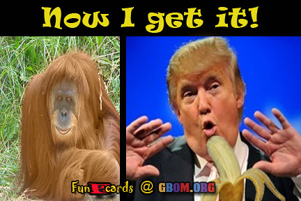 Donald Trump is an ape?