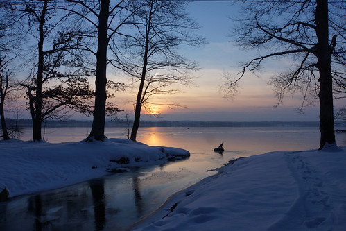 blue schnee winter light sunset sun lake snow cold reflection tree nature landscape see evening abend licht sonnenuntergang natur explore blau kalt landschaft sonne spiegelung baum starnbergersee februar reflektion 2013 dorenawm nex7