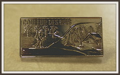 My Prize - The CdB Silver Pin
