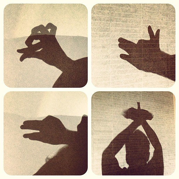 Animal shadow puppets