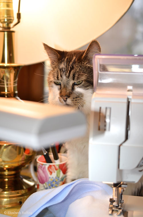 My kitty sewing assistant at the sewing machine, by Elizabeth Ruffing