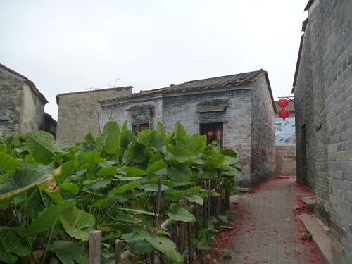 Guangdong13-Zhaoqing-Licha Cun (18)