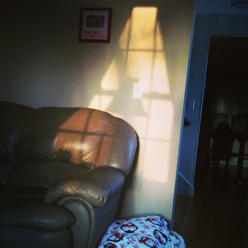 Sunday morning shadows