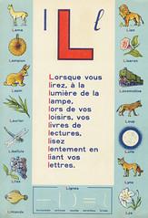 lexica p12