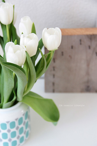 Thursday pics {happy spring!}