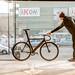 Urban Cyclist 11