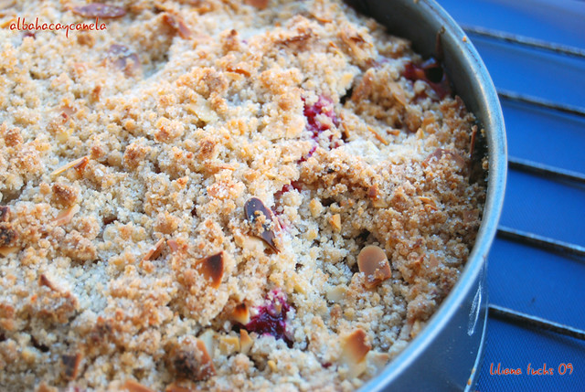 plum crumble cake2