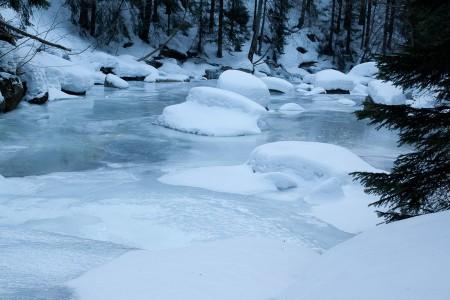 Miluji zimu, protože mám běžky!