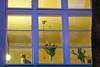Blaue Stunde in Gelb by nasowie