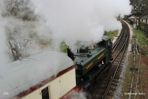 Buckfastleigh Station by Stocker Images