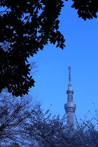 Tokyo 2013 (春) - 東京スカイツリーイーストタワー (16)