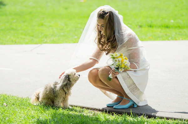 bride short wedding dress dog yellow bouquet