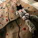 LU Wolf Scales the New Rock Climbing Wall by Loyola University Chicago