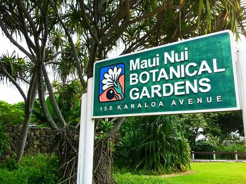 Photo by Maui Nui Botanical Garden