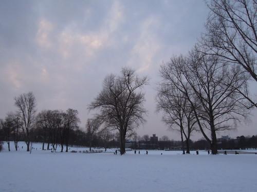 Snow, January
