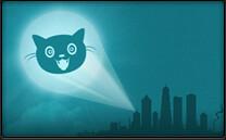 cat signal