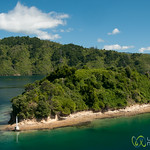 Island in the Cook Strait - Wellington to Picton, New Zealand