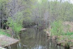 Spring Hath Sprung by Teckelcar