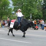 Calgary_Tag3bis6 - 18-300x225