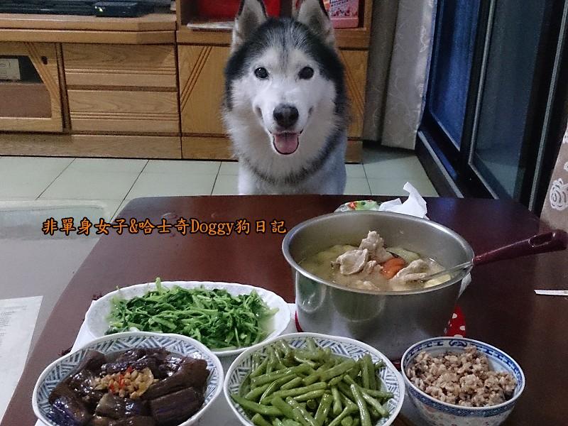 Doggy貪吃狗7桌8