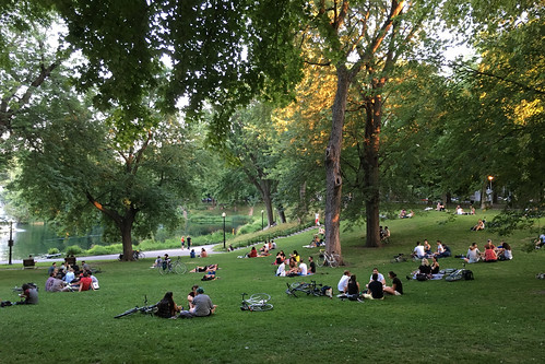 montreal: evening in parc la fontaine