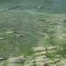Konigsee-20120918_2485