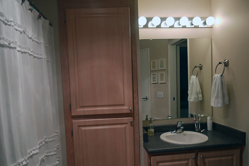 Bathroom Feb 2013