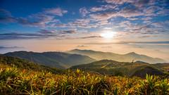 Sunrise @ Tai Mo Shan