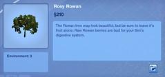 Rosy Rowan