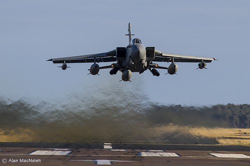 _MG_2947_Tonka_HeadOn_FerryFit by onemacguru