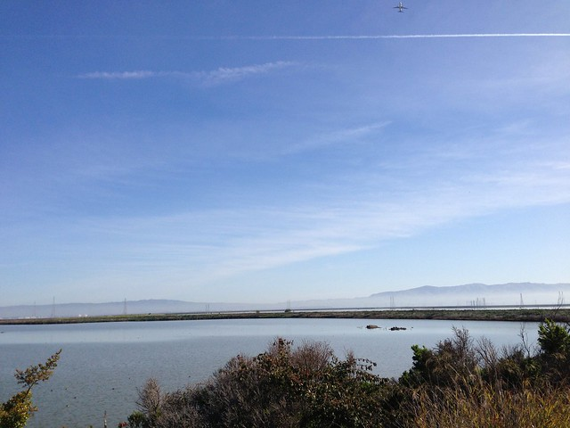 Shoreline Baylands Trail