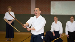 aikido, hapkido, kenjutsu, iaidå, individual sports, contact sport, sports, combat sport, martial arts, japanese martial arts,