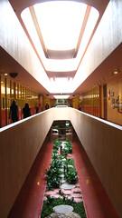 Marin Civic Center, Frank Lloyd Wright