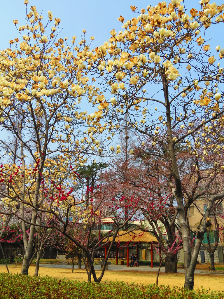 Gukchae- Bosang Memorial Park