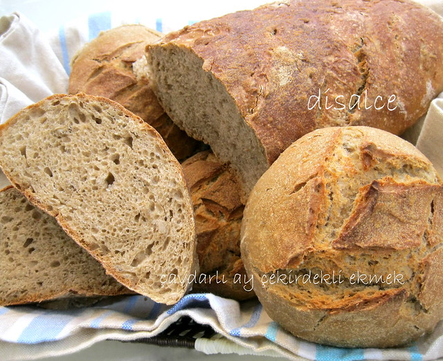çavdarlı ayçekirdekli ekmek