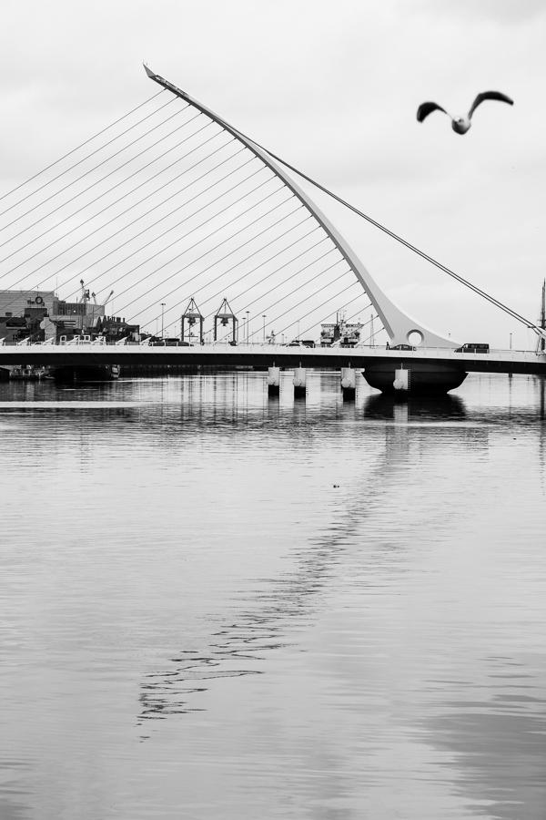 Dublin bridge, par Franck Vervial