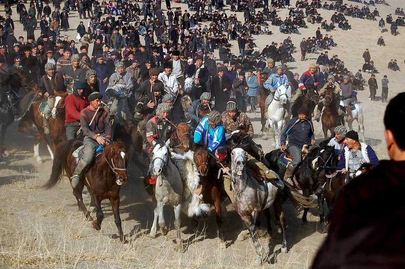 Samarkand D40 Teona 2011 571-1