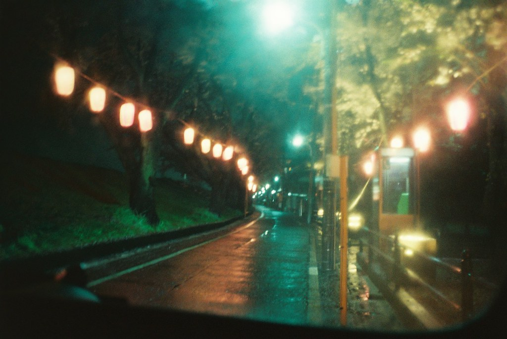 cold spring rain and cherry blossoms at night